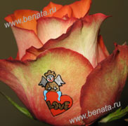 изображение на цветах