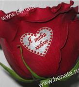наклейки на цветы в Украине